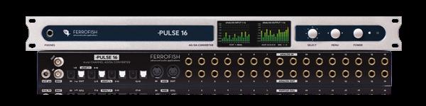 Ferrofish_pulse16.png