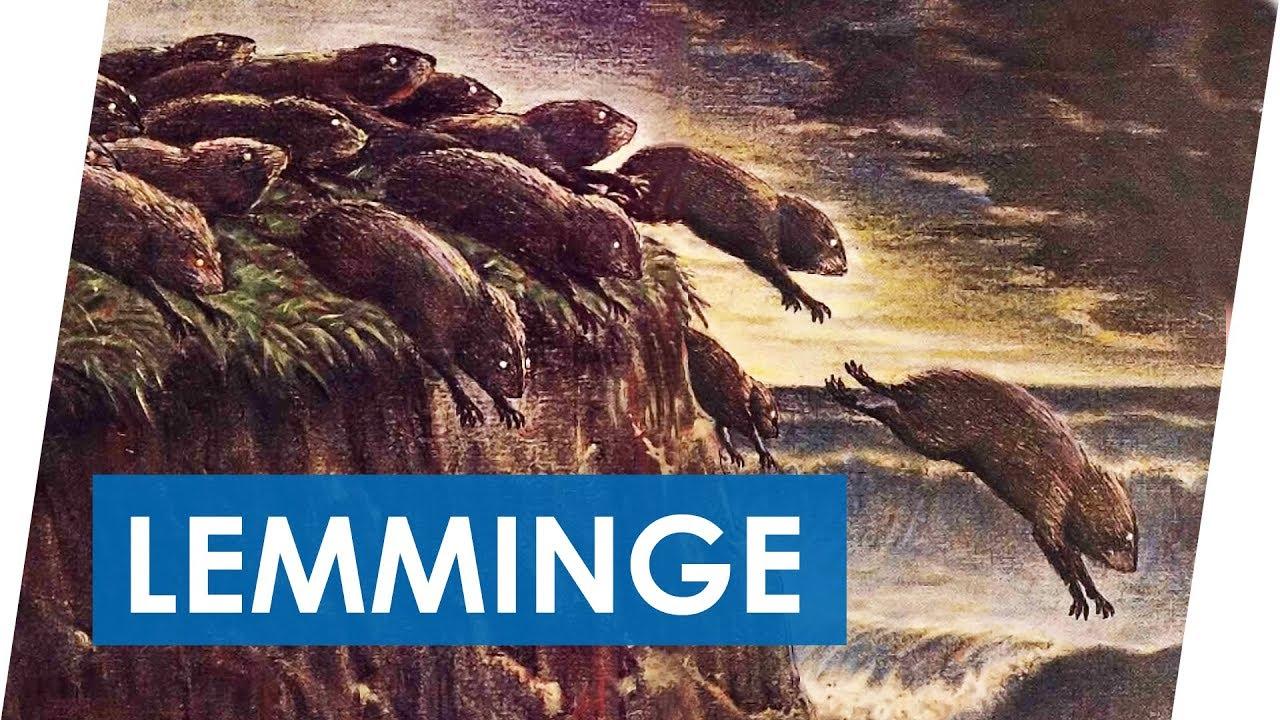 Lemminge 2.jpg