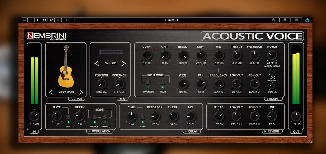 Nembrini Audio_Acoustic Voice.png