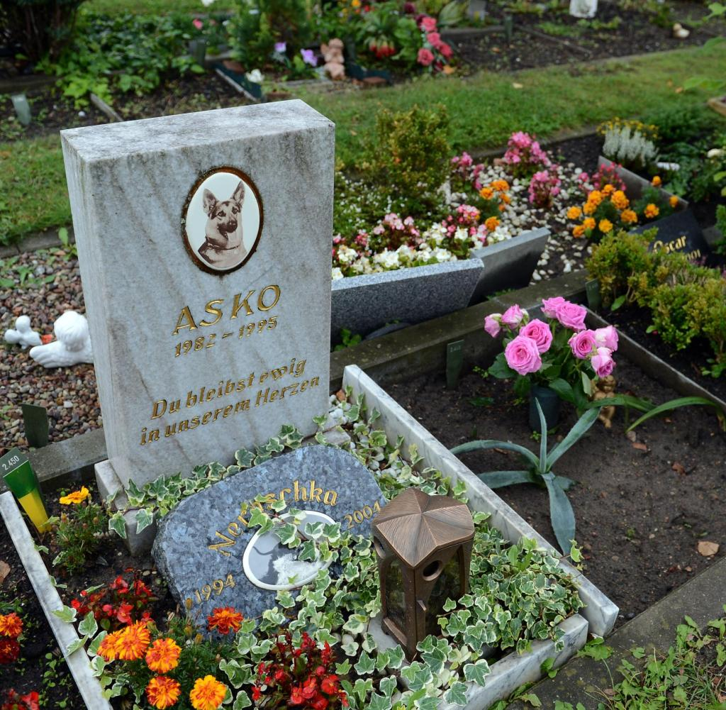 Tierfriedhof-Berlin.jpg